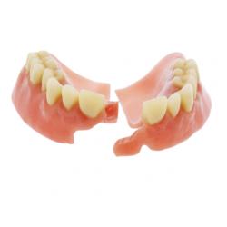 Denture Repairs and Reline